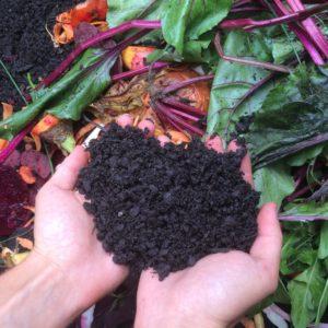 Štát ponúka samosprávam peniaze na zber kuchynského odpadu, aj na vybudovanie kompostární