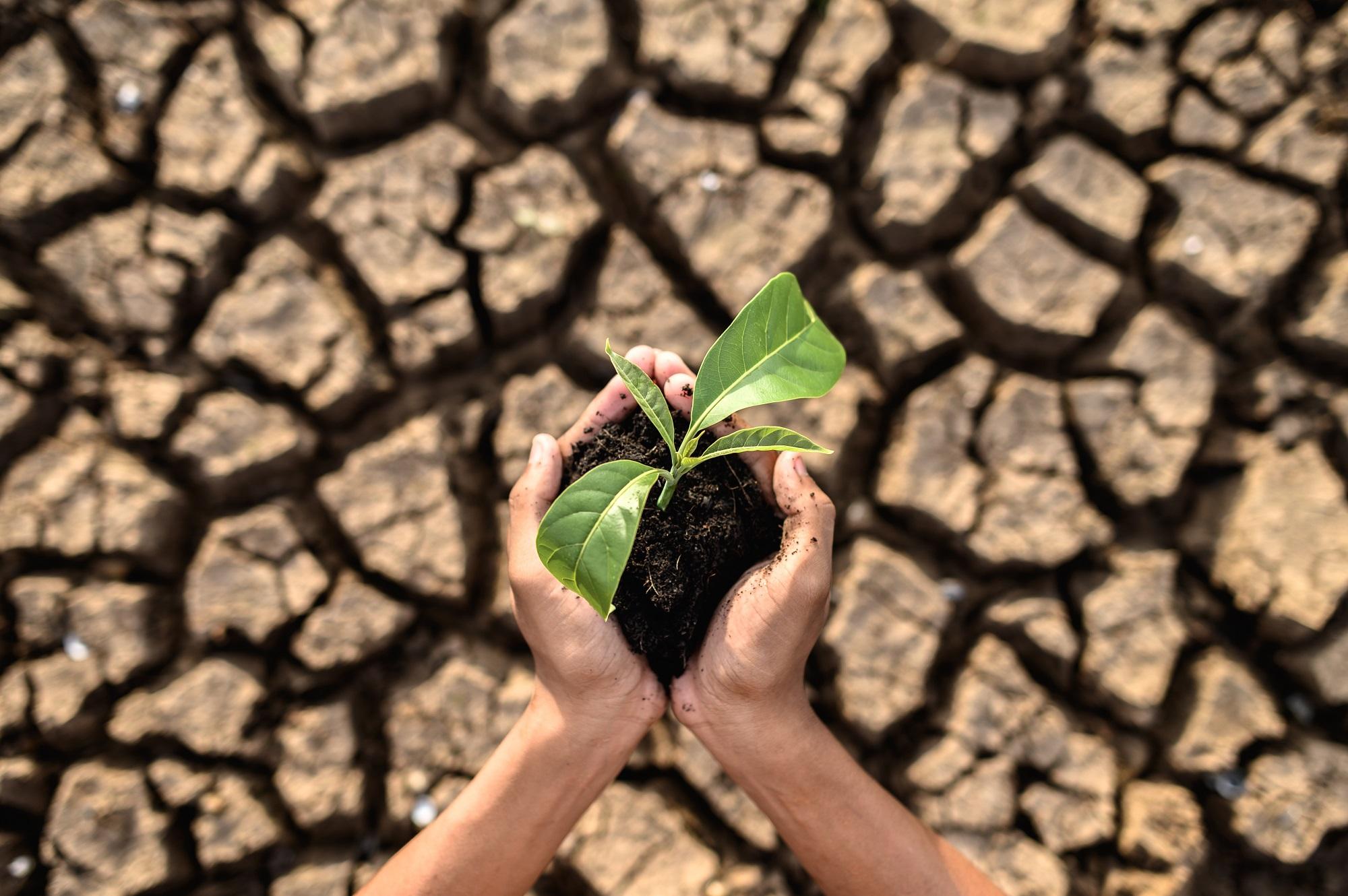 sucho, erozia, kompost, bioodpad