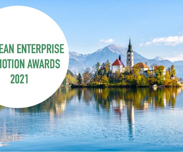 Systém ELWIS získal ocenenie a postúpil do európskeho kola EEPA