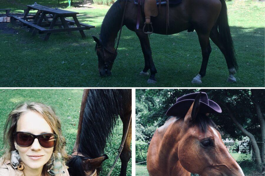 Nová posila ELWIS Lucka a jej kôň